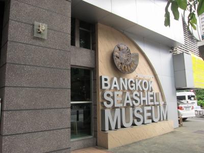 貝殻博物館の外観