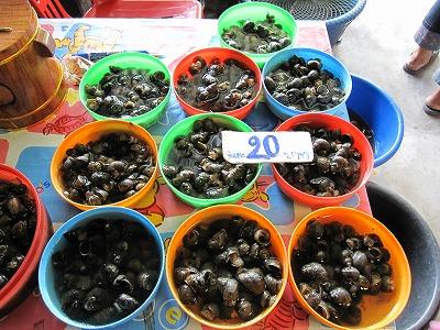 タンブン用の貝
