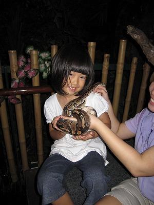 ヘビを抱っこするお姉ちゃん
