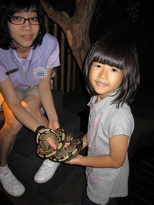 ヘビに舐められる姉