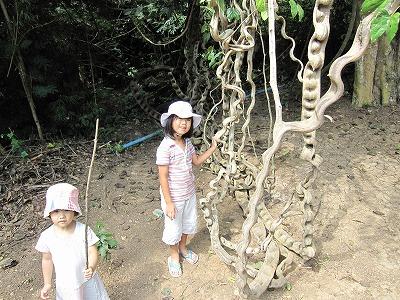 エラワンの滝公園2