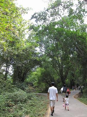 エラワンの滝公園5