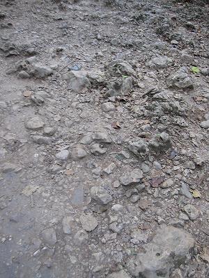 エラワンの滝公園13