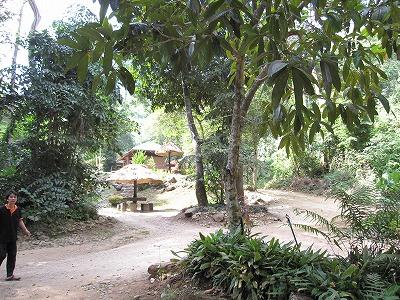 エラワンの滝公園16