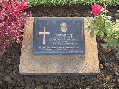戦争墓地内3