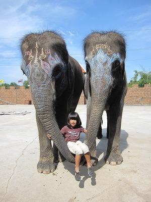 ゾウと記念撮影1