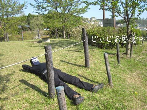 425maruyama3.jpg