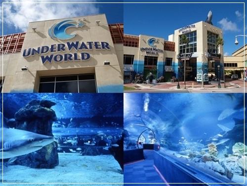 underwater04-horz-vert.jpg