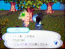 081009butumori4.jpg