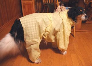 手作りの犬のレインコート