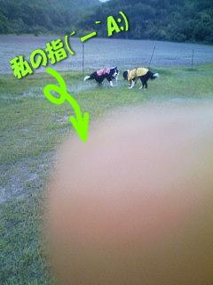 0721-3台風散歩
