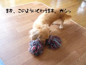 写真33(№61用)1