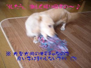 写真34(№61用)1