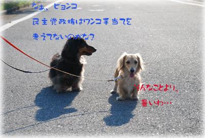 写真45(№70用)1