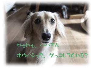 写真118(№97用)1