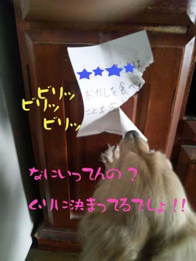 写真149(№107用)1