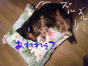 写真246(№138用)1
