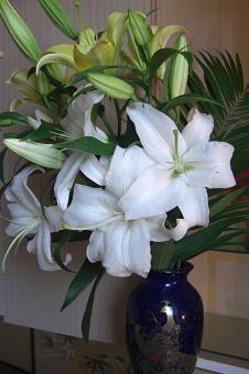 和室の花2