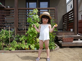 夏休み収穫2