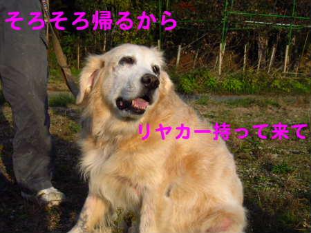 PIC00002_20091125215418.jpg