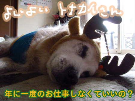 PIC00002_20091225205548.jpg