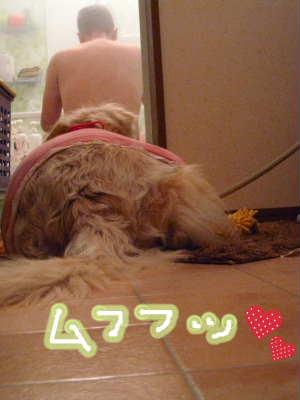 PIC00005_20091224221728.jpg