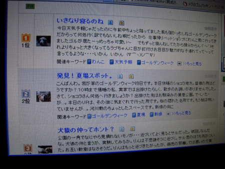 PIC00009_20100502004719.jpg