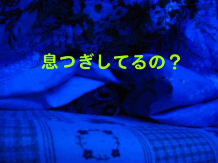 PIC00012_20091224221855.jpg