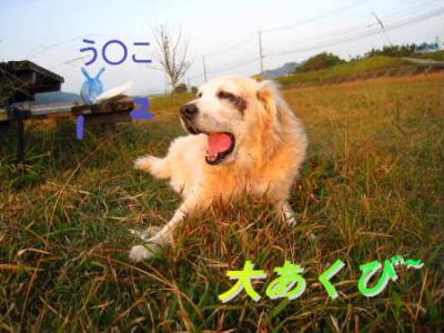 PIC00032.jpg