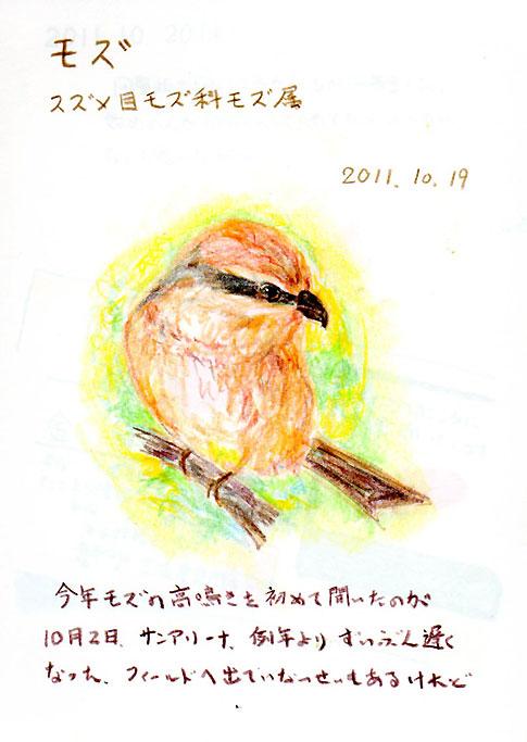 20111019モズs