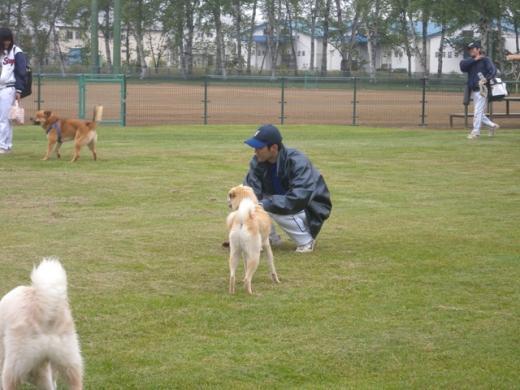 野球挨拶DSCN3311