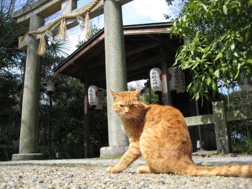 京都 おでかけ2