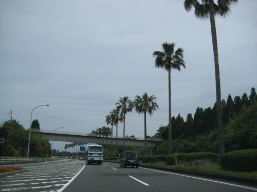 宮崎 青島神社 1