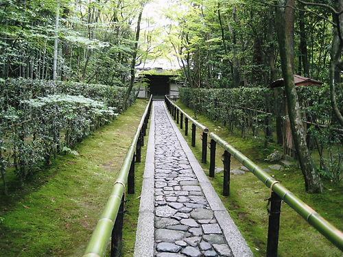 大徳寺10