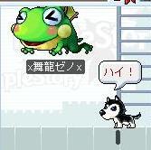 カエルかわいい・・