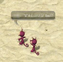 AS2007040609141409.jpg