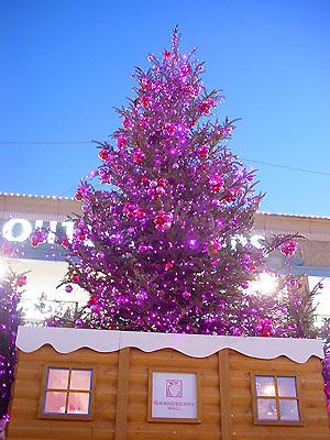 グランベリーモールのクリスマスツリー