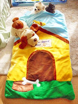 子供用寝袋 (全体図)