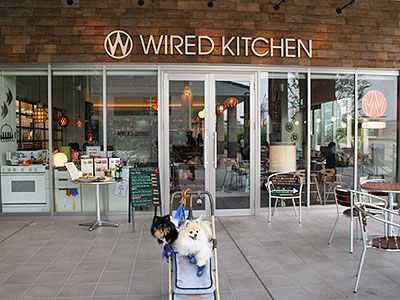 WIRED KITCHEN (外観)