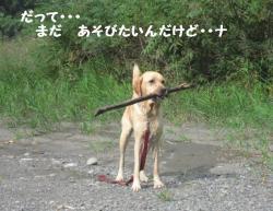 IMG_3505ぽつん