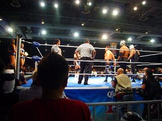 expo lucha 16