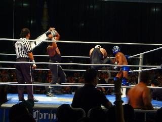 expo lucha 19