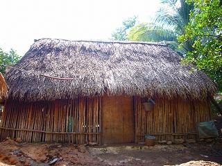 pueblo maya 3