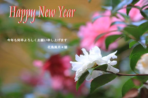 2012年賀のご挨拶