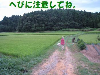IMG_5477.jpg