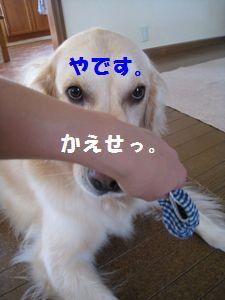 IMG_5525.jpg