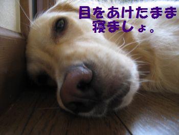 IMG_5664.jpg