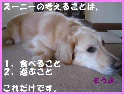 IMG_5802.jpg