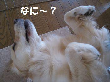 IMG_5879.jpg