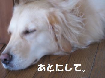 IMG_5882.jpg